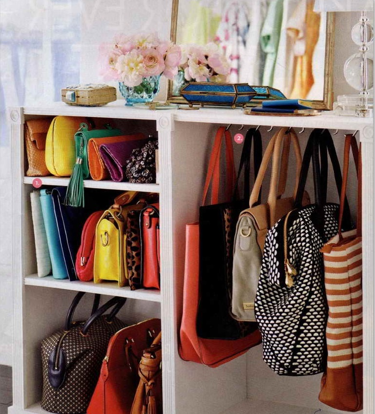 Bags Hanger And Shelves Completing Awesome Closet Organization Ideas With  Classic Table Lamp