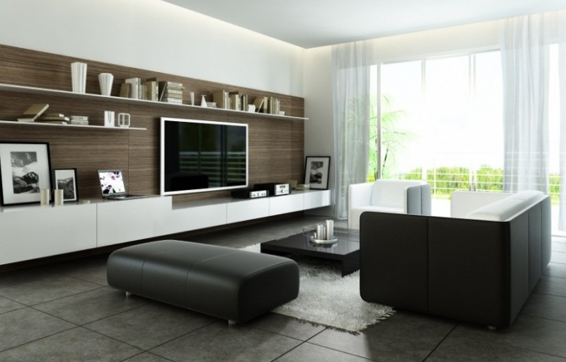 Black and White Modern Living Room Ideas with Bold Wood Accent for Shelving Backdrop
