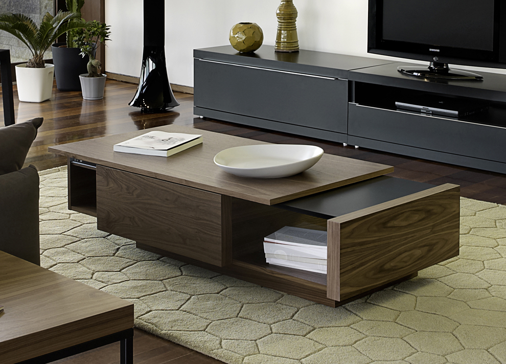 Dark TV Cabinets and Wooden Coffee Table with Storage Decorating Minimalist Room with Laminate Flooring