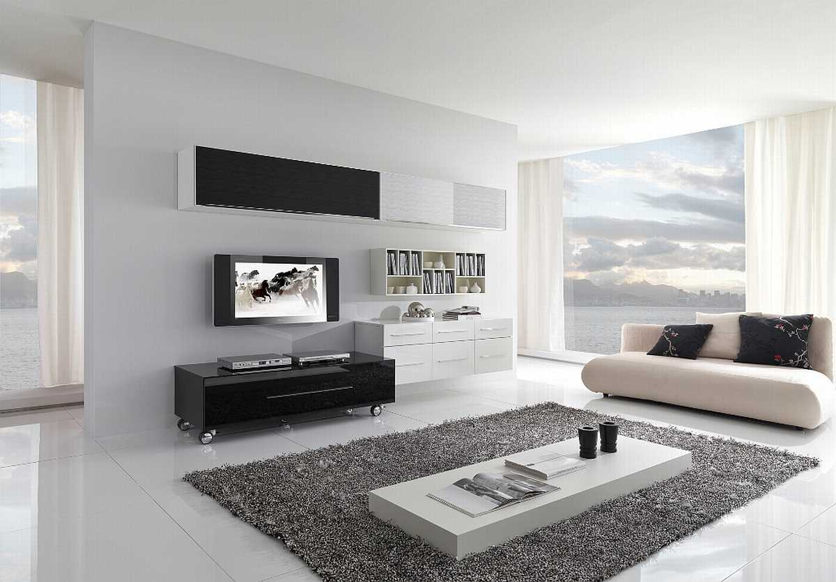 Excellent White Liivng Room Interior Design with Ample Windows and Grey and Black Touches