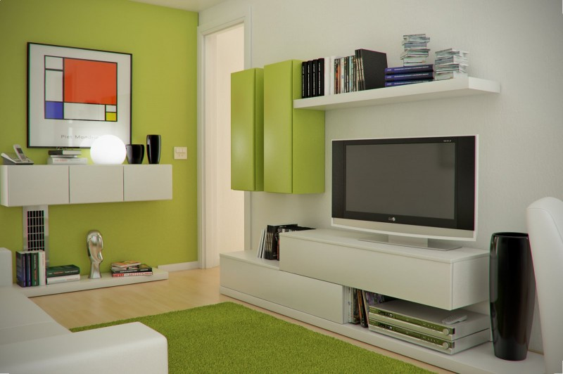 Interesting Green and White Color Scheme of Small Living Room with Sleek Modern Furniture
