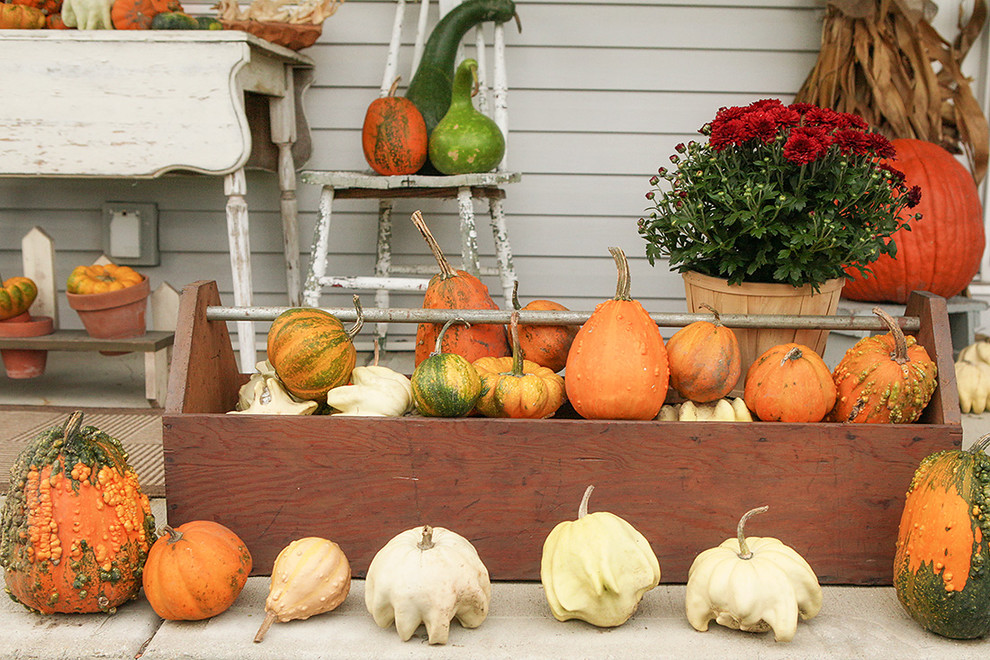 Use Rustic Fall Decorating Ideas for Patio with Unusual Pumpkins and White Chairs on Wooden Deck