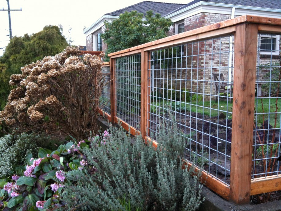 Adorable Backyard Fence Ideas With Wooden and Strimin Material Design