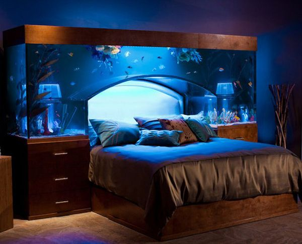 Amazing Fish Tank Ideas with Wooden Element and chic Accessory plus Blue Color