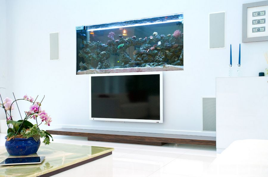 Awesome Picture for Fish Tank Ideas with Glass Element and Small Cute Lamp