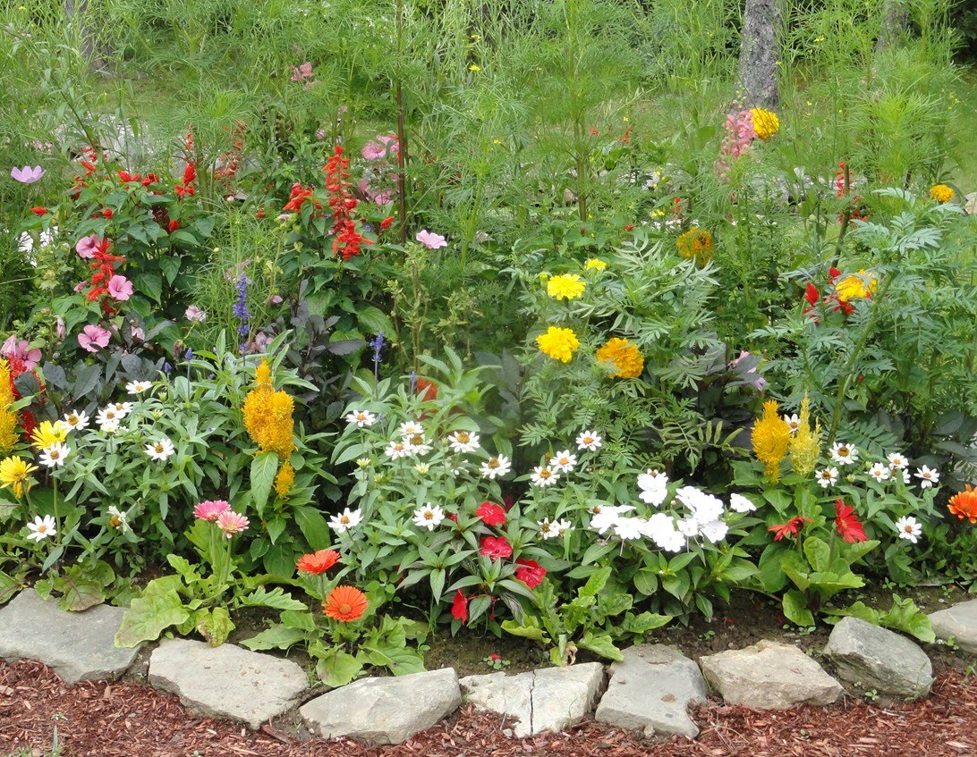 Flower bed ideas the ultimate touch of the nature in your garden midcityeast - Plant decorating ideas tasteful nature ...