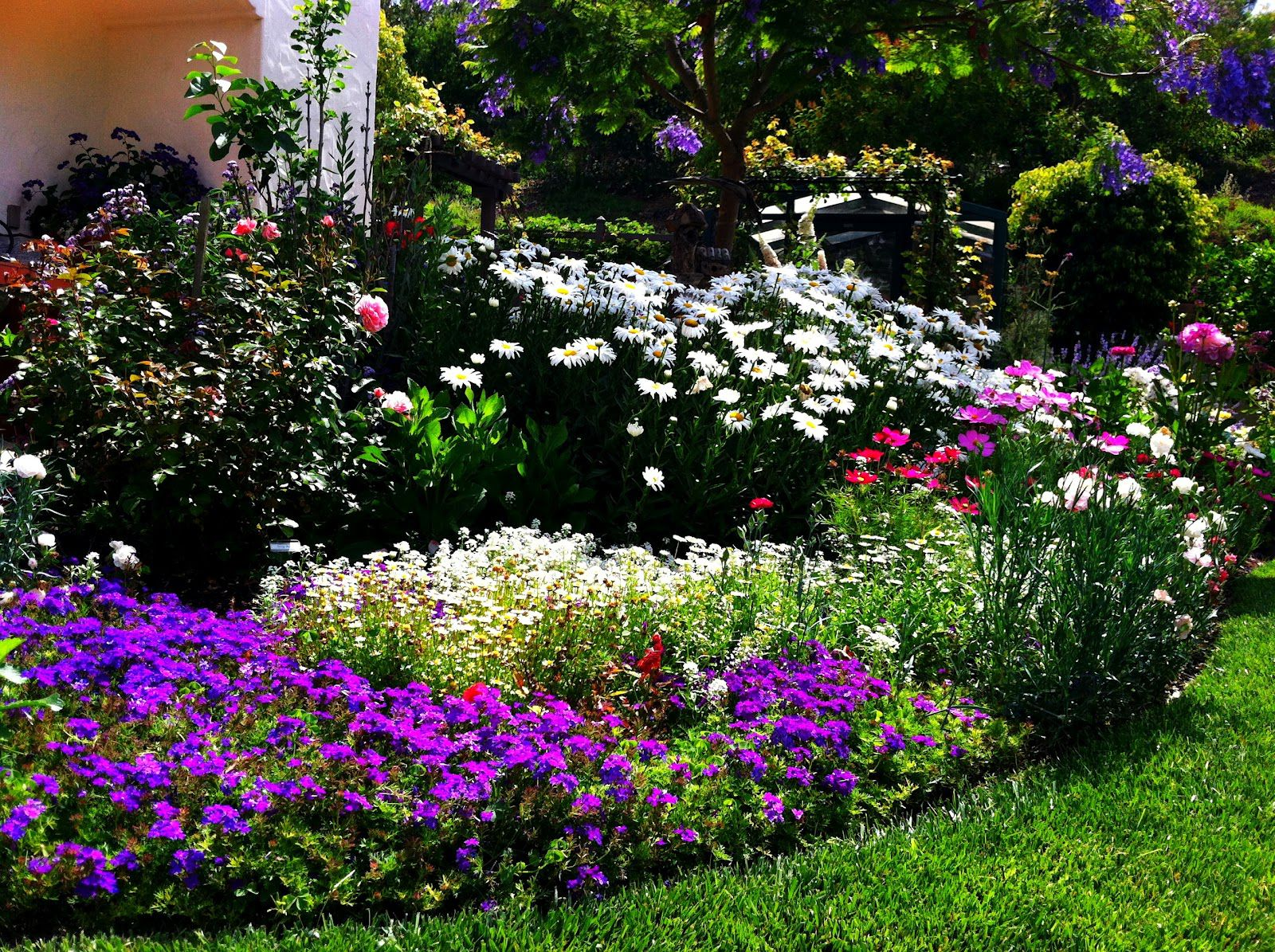 Colorful Garden Flower with Flower Bed Ideas