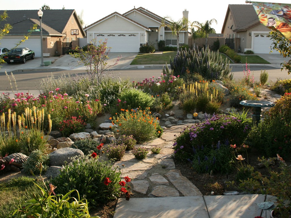 Make simple fresh and modern drought tolerant landscaping for How to design landscaping