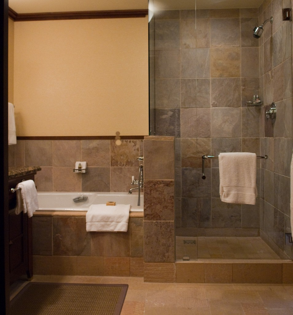 Complete Small Walk In Shower Designs with Stone Tile Wall and Clear Glass Door beside White Bathtub