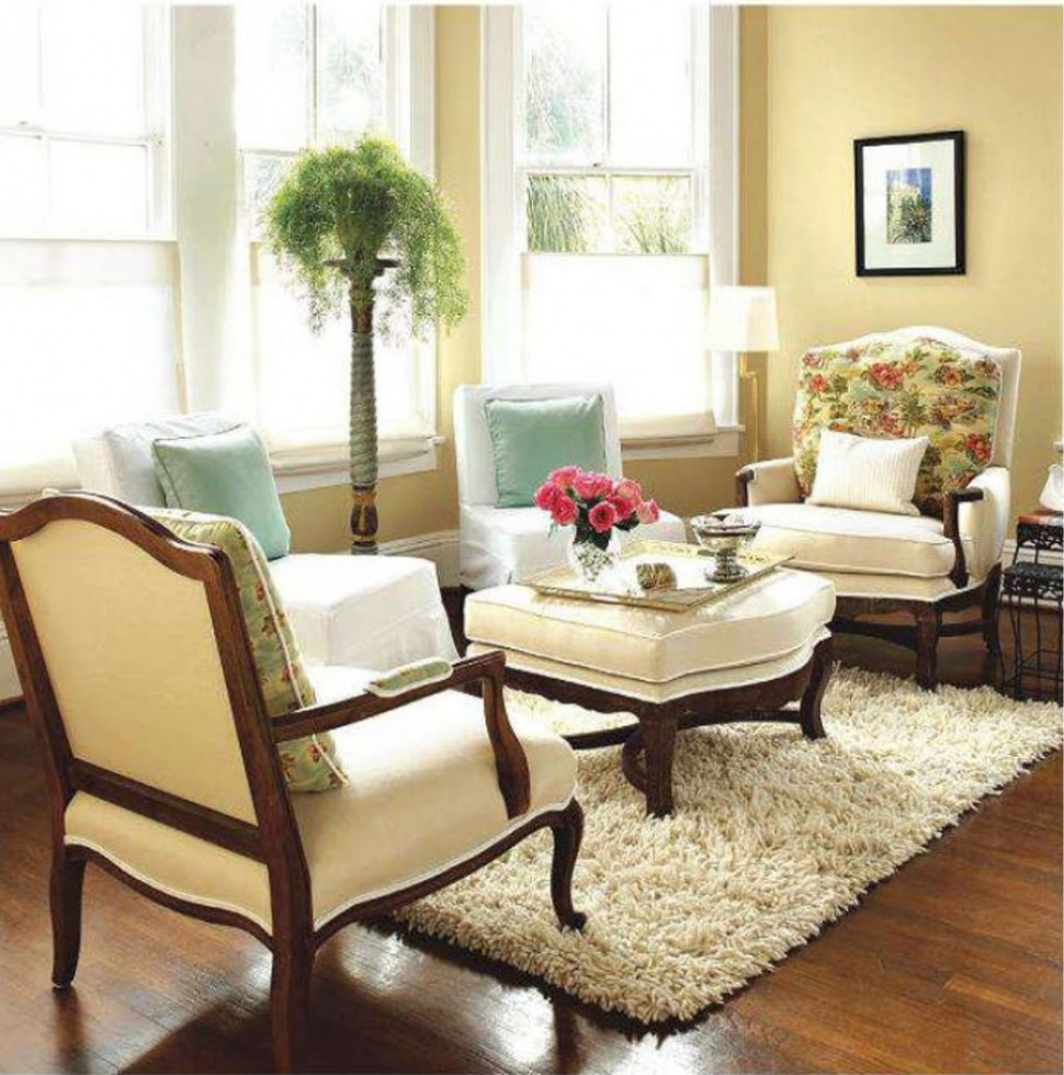 Delicate Arm Chairs and Coffee Table For Rustic Living Room Ideas