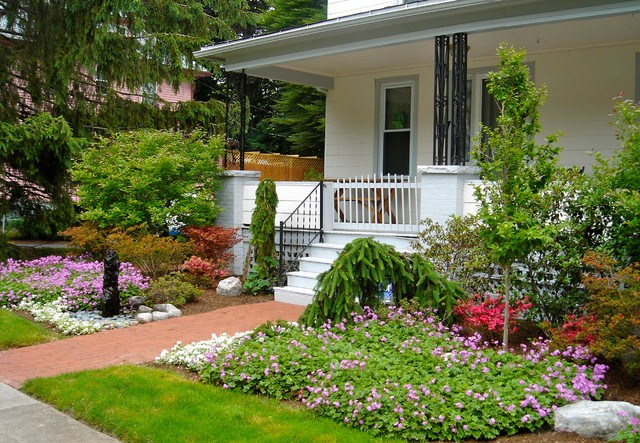 Interesting Flowers and Trees Plus Plants for Small Front Yard