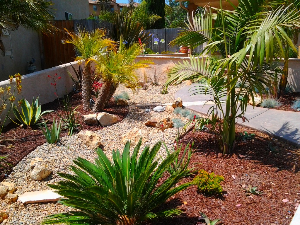 Interesting Pebble Space in Drought Tolerant Landscaping Yard with Green Plants and Concrete Pathway