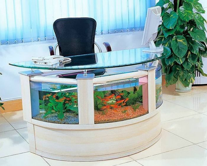 Natural Plant Accessory Decor in Fish Tank Ideas with Great Desk Design Picture