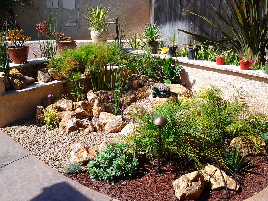 Place Cream Stones in Small Desert Like Drought Tolerant Landscaping with Green Plants