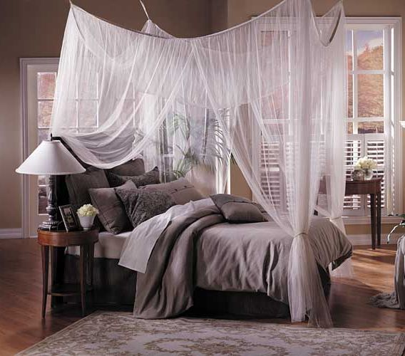 Radiant Grey Pillow and Cover plus Chic White Canopy Bed & Some Ideas of the Various Materials of Chic White Canopy Bed for ...