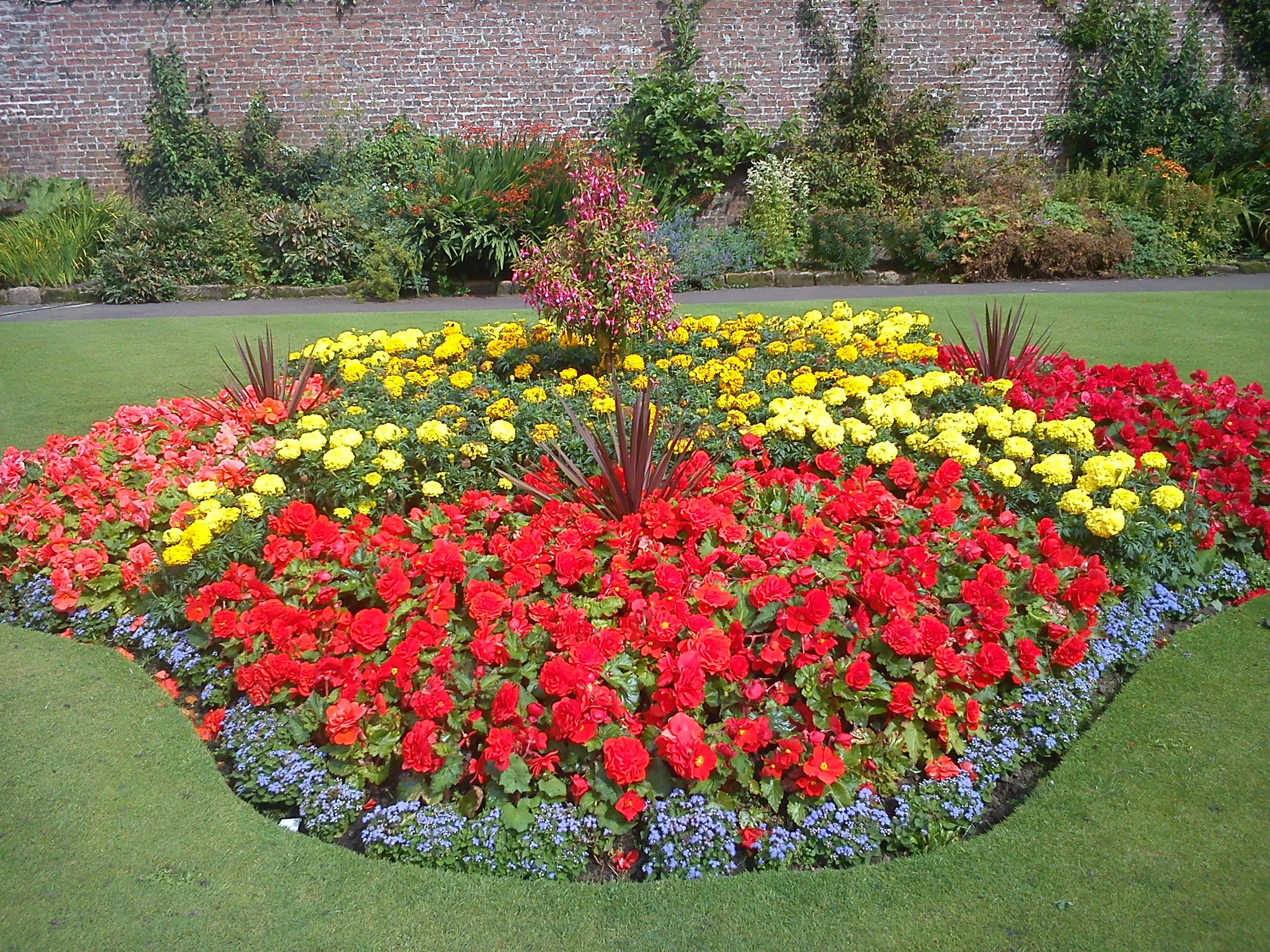 Red and Yellow Flower Garden on Flower Bed Ideas