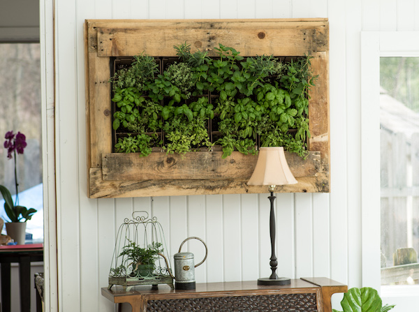 Remarkable Accessory Decor with Fresh Grass on Wooden Square Frame