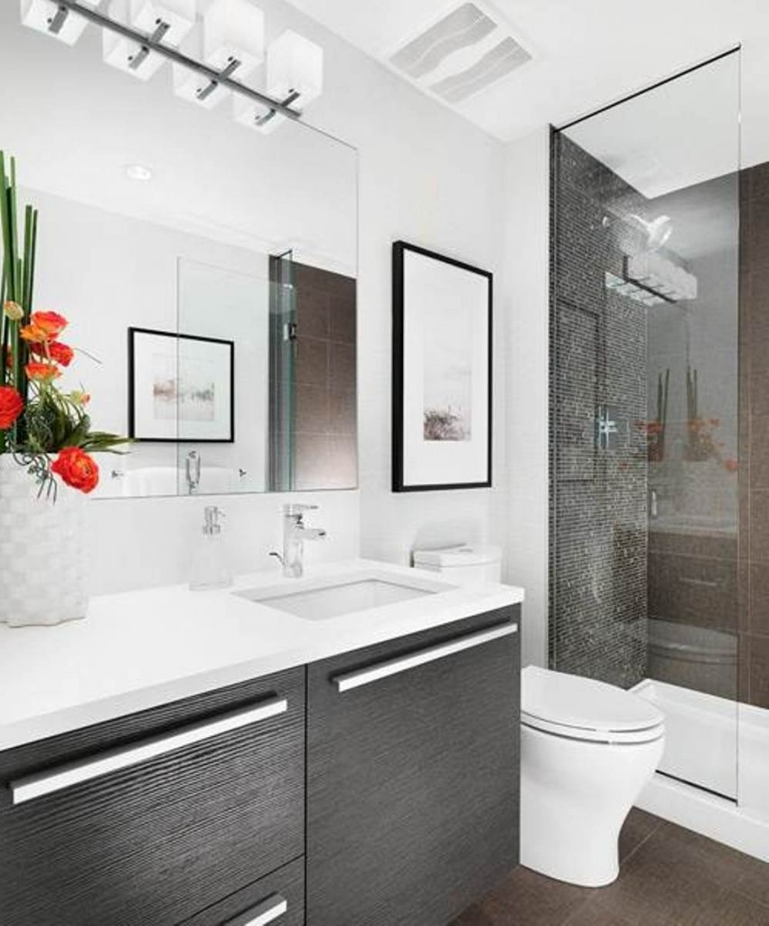 Bathroom Ideas: Small Bathroom Remodel Ideas