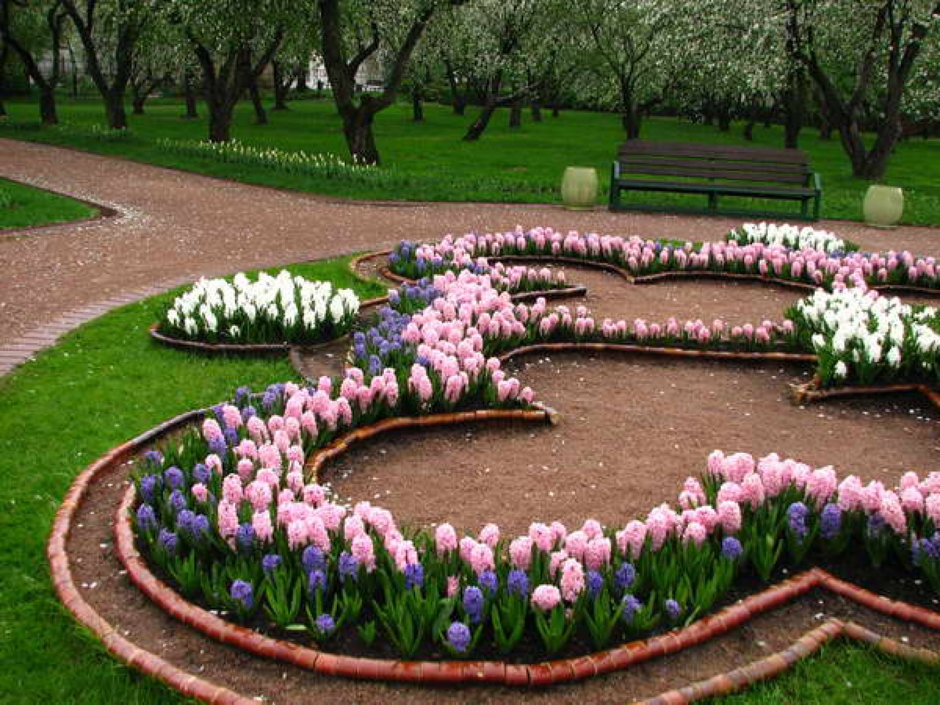 Amazing Design Of The Flower Bed Designs With Pink And White Daisy Flower Ideas With Beauty Shape Of The Bed Ideas