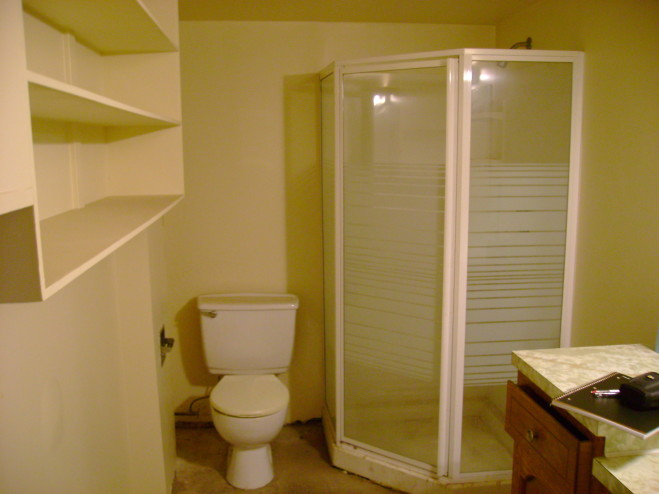 Basement bathroom ideas for attractive looking interior Basement bathroom ideas
