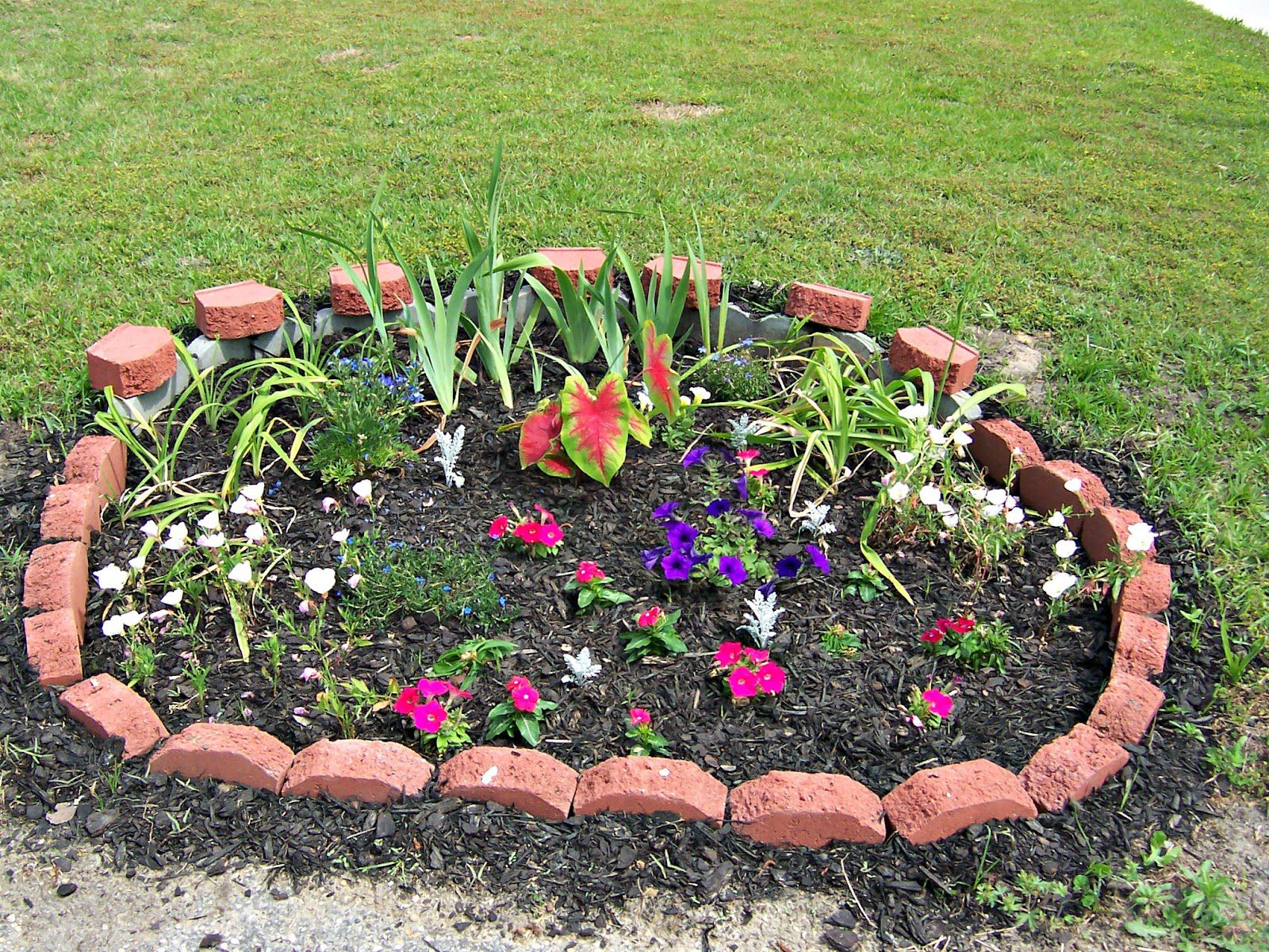 Simple Design Of The Flower Bed Ideas With Little Red Brick Fences Ideas With Black Soil Ideas
