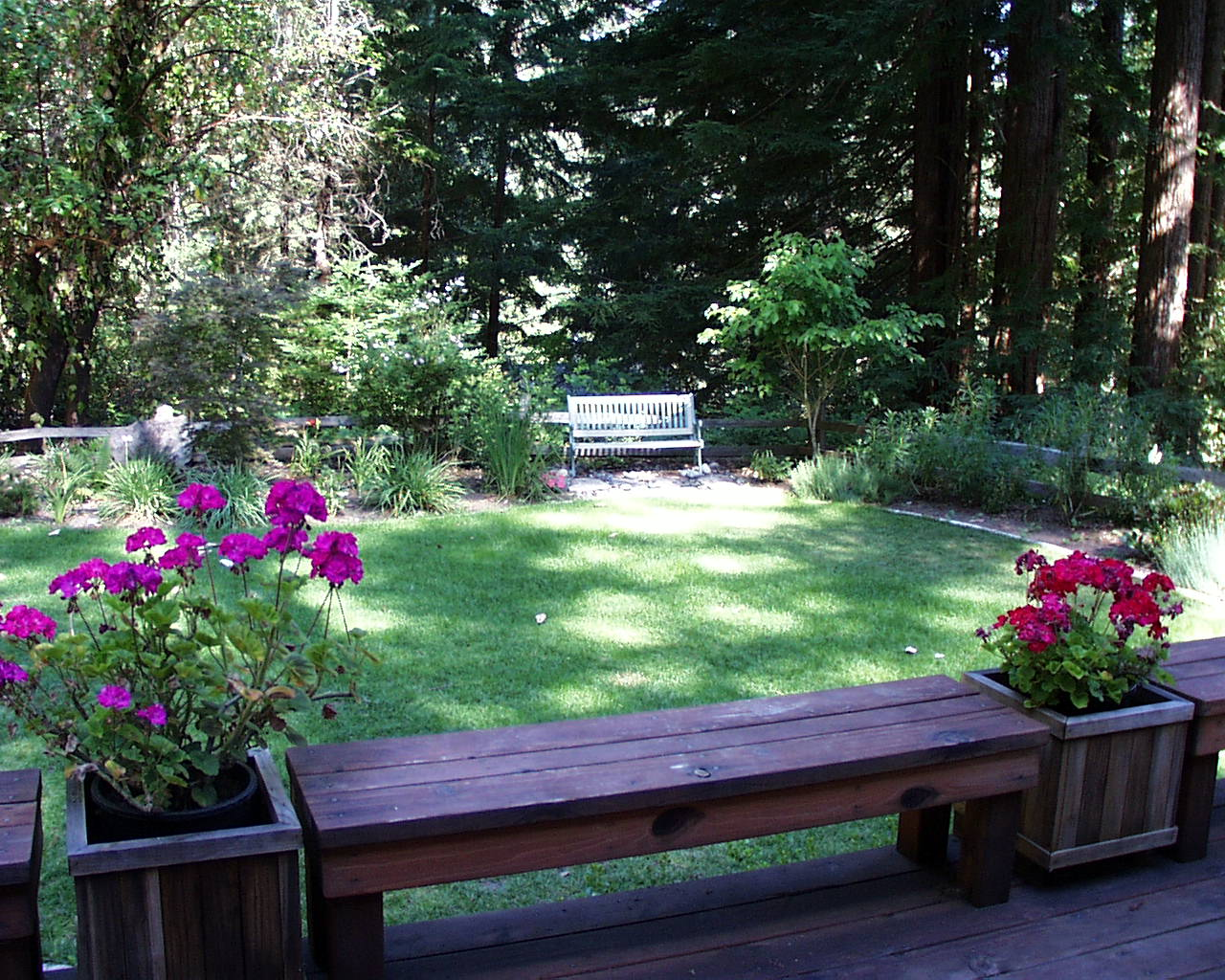 Spacious Backyard with Red Flowers on Interesting Planter plus Wood Chair