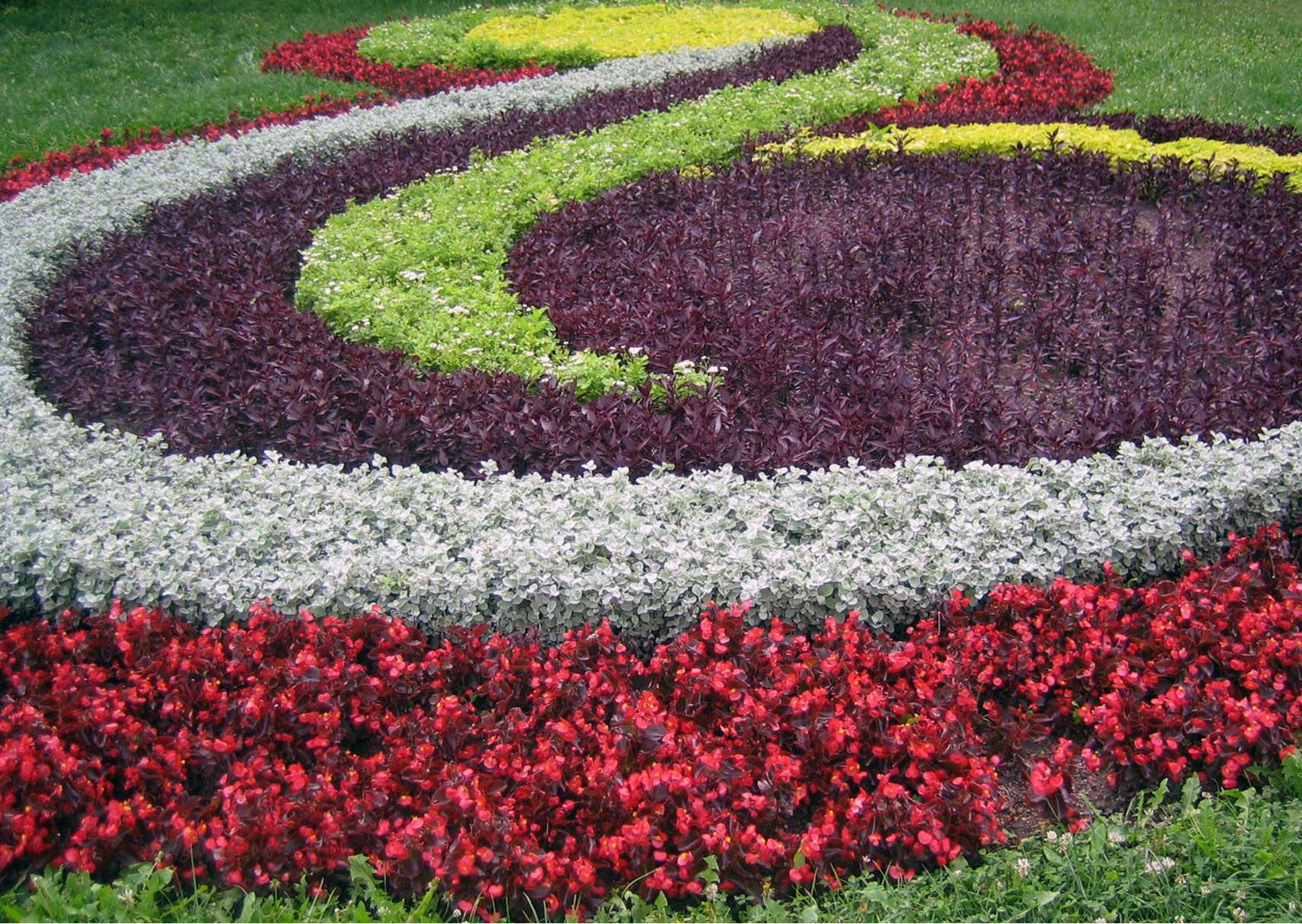 Stunning Design Of The Red White And Purple Flower Combining Become Flower Bed Ideas For The Backyard Areas