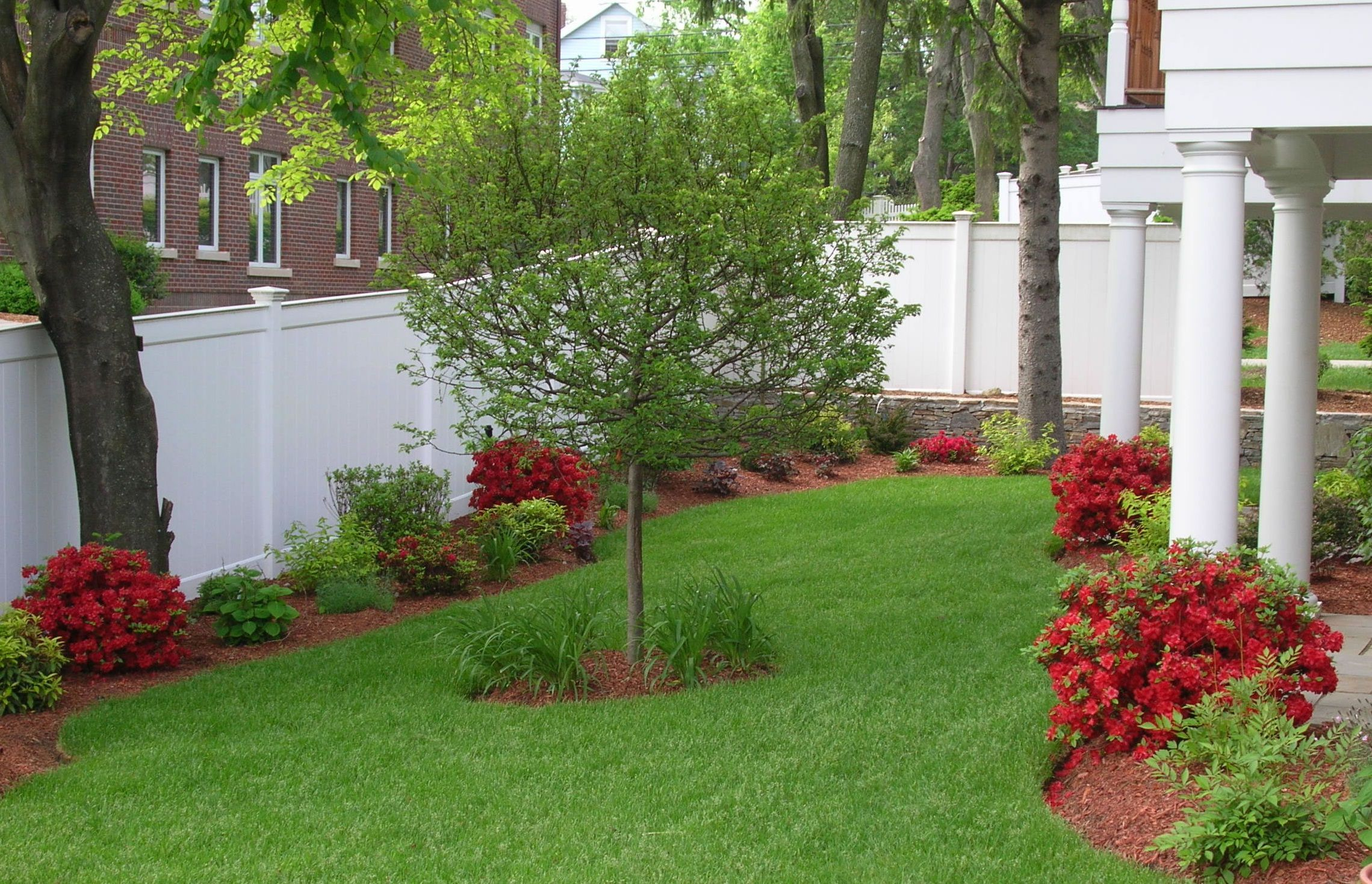 Uncommon Red Flowers near Fresh Grass for Backyard Garden with White Fence