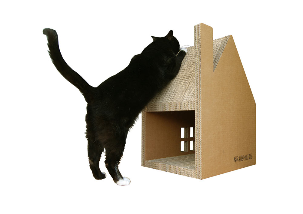 Horrible Cardhouse Cat House Design Ideas With Door also Window
