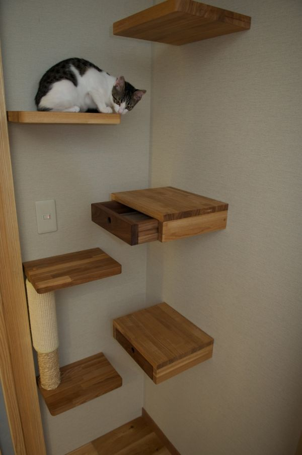 Pleasant Wooden Mounted Corner Shelf With Drawer  For Best Interior Decor