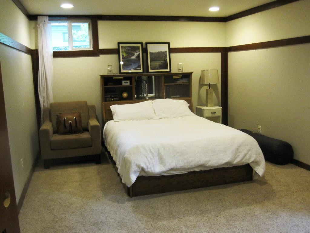 Tantalizing Bed With Shelve Near Sofa For Basement Bedroom Ideas