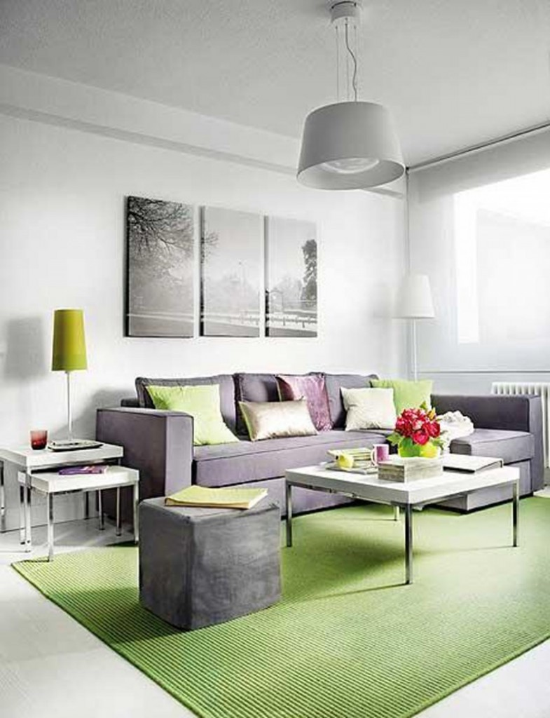 Wonderful Living Space Studio Apartment Decorating Using Gray Sofa and Chandelier