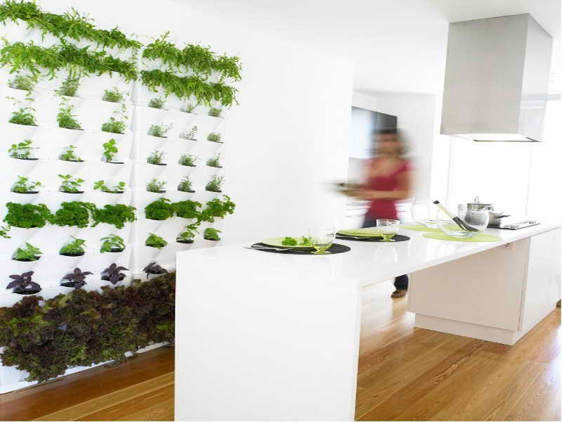 Lavish Kitchen Design With Indoor Wall Planters also Modern Table
