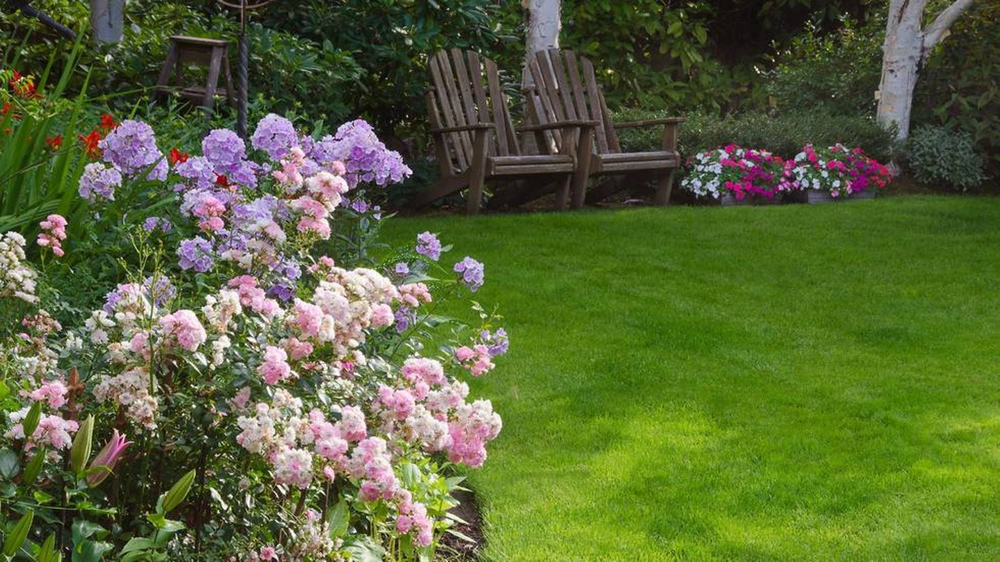 Wondrous Bacyard With Curb Appeal Landacaping Using Flowers and Garden Chair