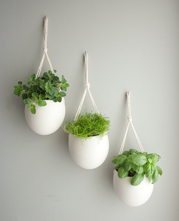 Perfect Concept Of Indoor Flower Pots Using Rope Attached On Wall