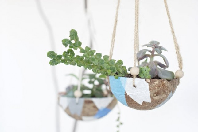 Seductive Concept Of Indoor Flower Pots Using Coconut Planter and Rope